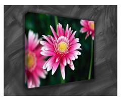 Highly Affordable Canvas Photo Prints
